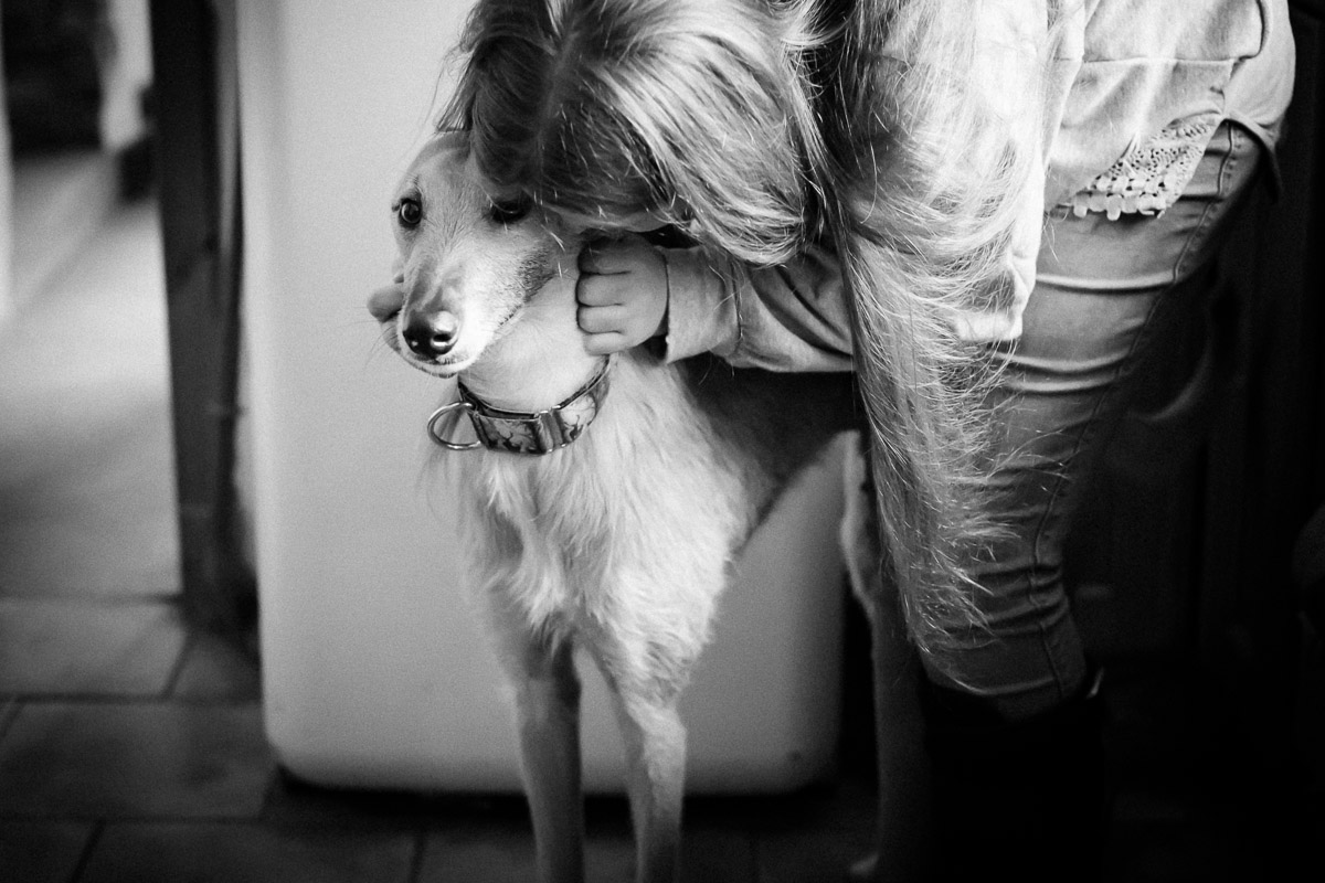Teenage girl cuddling dog in Berwick-upon-Tweed