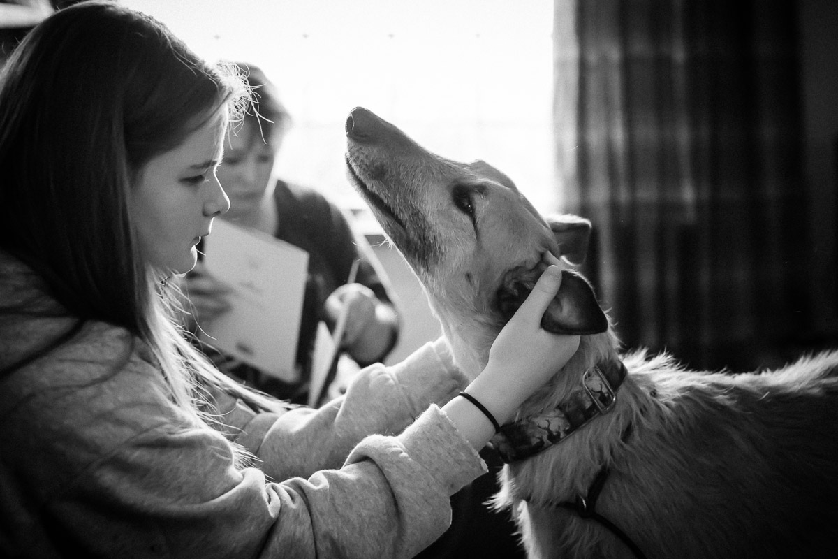 Teenage girl and dog in Berwick-upon-Tweed, Northumberland Family Photography
